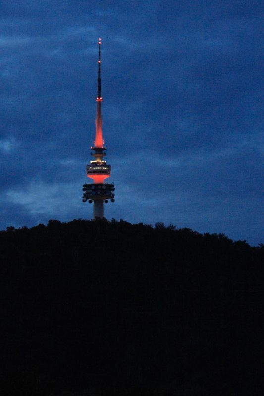 Telstra Tower 2013 lit up orange in recognition for premmies