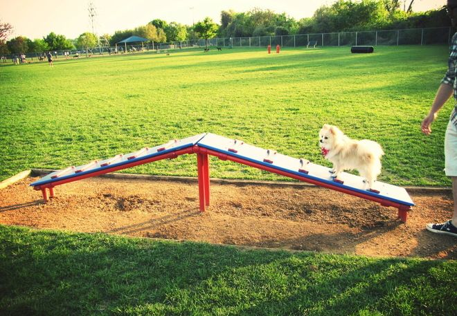 Fun for Fido: Dog Park Equipment from PDPlay -- PDPlay is proud to present a new line of dog park equipment designed to help stimulate physical and mental activity. Made from the same recycled HDPE as our playground components, PDPlay's dog park equipment will keep your pup both happy and healthy. - See more at: http://pdplay.com/dog-park-equipment/#sthash.iMYl9UwP.dpuf