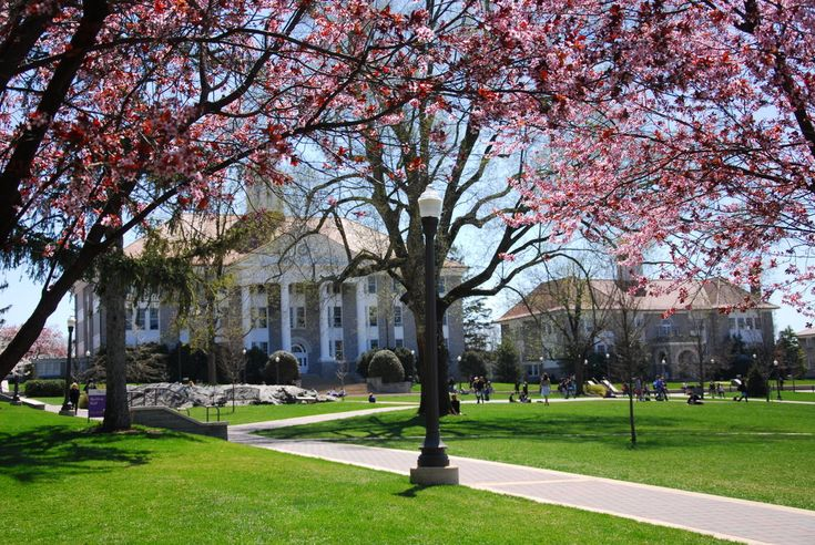 The quad at JMU.  Favorite place on a spring day.