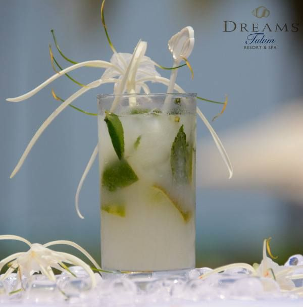 A light and refreshing tropical mojito is the perfect drink to go along with your gourmet dinner at Dreams Tulum Resort & Spa!