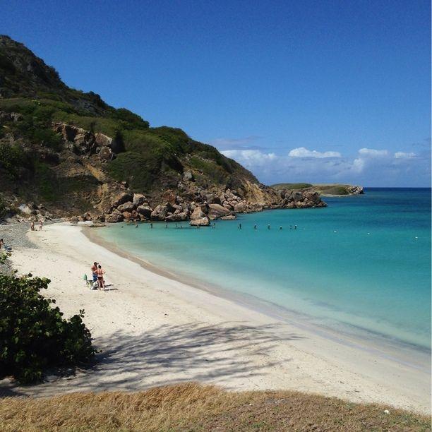 """Discovered by Eduardo R """"Island off the coast of PR"""" at Isla de Caja de Muerto, Capitanejo, Puerto Rico"""
