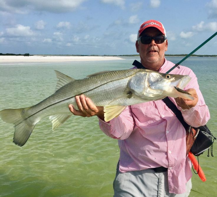 3 Tips To Catching Snook In The Summer (From The Beach