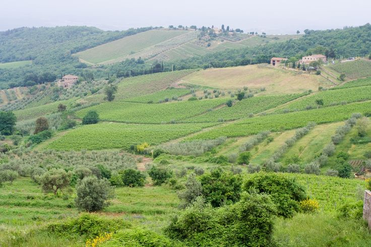 #Chianti hills in #Tuscany between #Florence and #Siena http://www.weekendromanticotoscana.info/en/chianti/