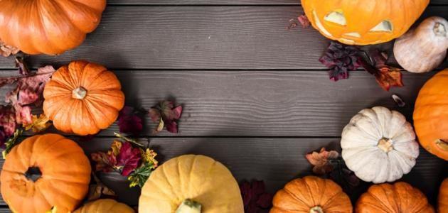 فوائد القرع Pumpkin Photos Halloween Pumpkins Halloween Images