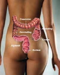 Club Equilibre Naturel » Mettons les choses au point sur le lavement intestinal
