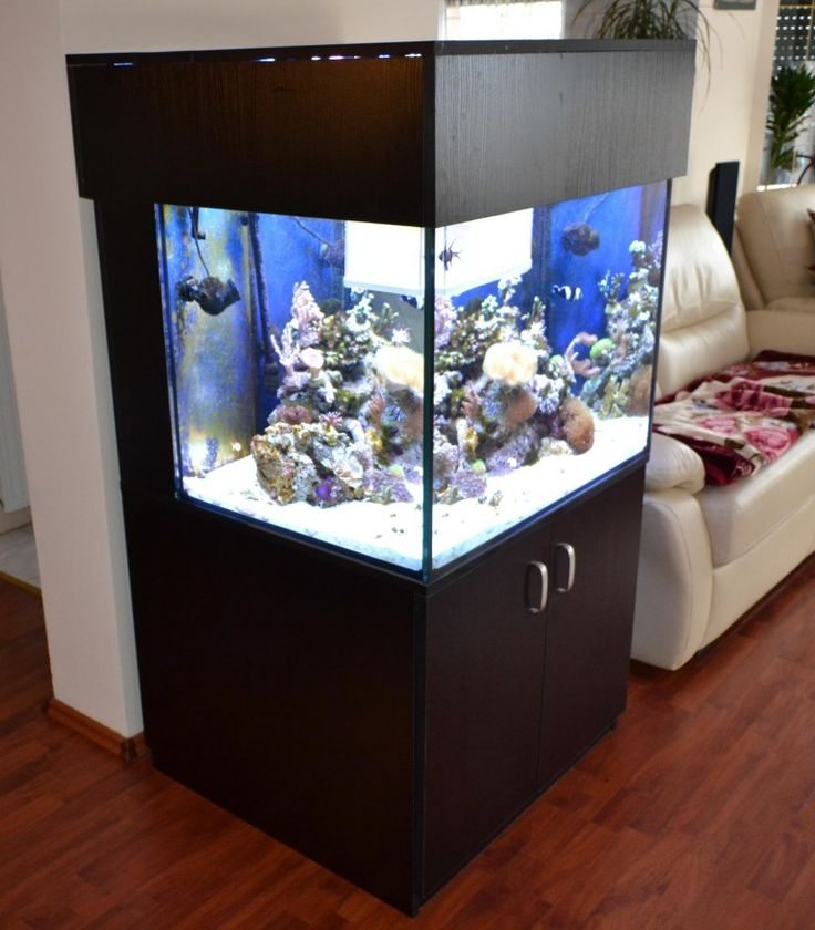 Akwa-Terra - akwarium morskie szafka z pokrywą