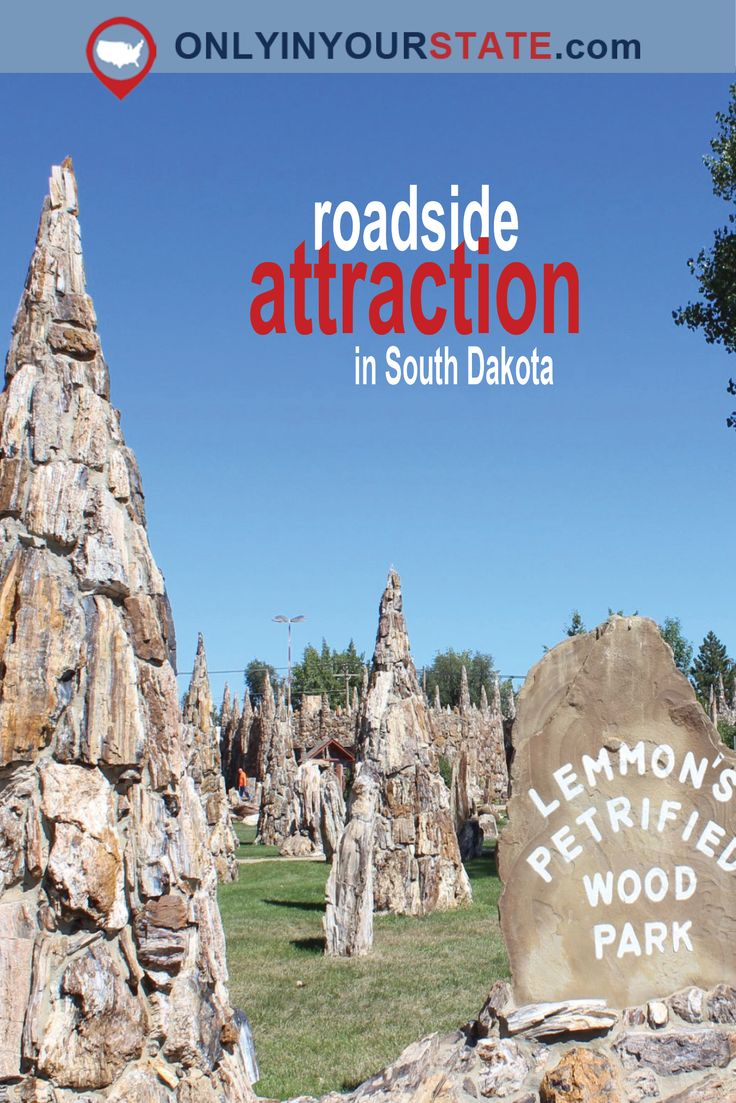 Travel | South Dakota | Park | Roadside Attractions | Road Trip | Drives | Weekend | Petrified Wood | Natural Wonder | Beautiful | Photography