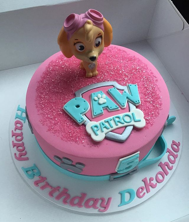 Another one of my popular girl themed paw patrol cakes I hope Dekohda had a…