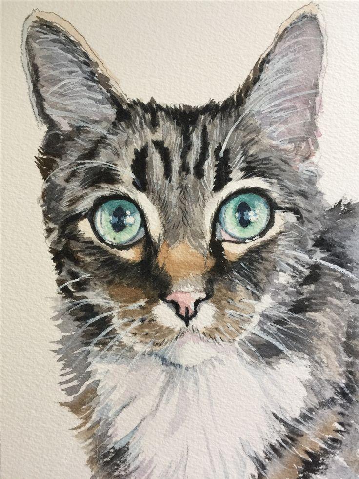 Gray Tabby Cat Watercolor Painting By Sherry Daerr Gato De Acuarela Pintura De Gato Dibujos De Animales