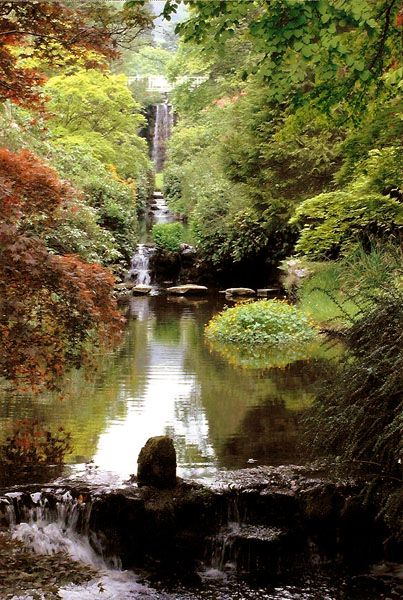17 Best Ideas About Japanese Water Gardens On Pinterest