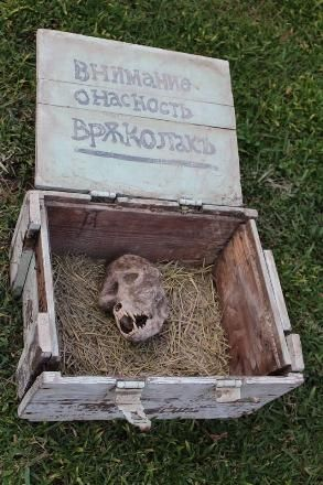 Sofä da Sala Notícias: O Crânio de Lobisomem da Macedônia