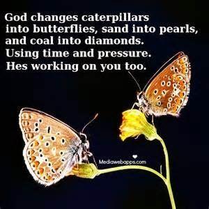"Quotes About Dimonds : Rick Warren quote ""God changes caterpillars"""
