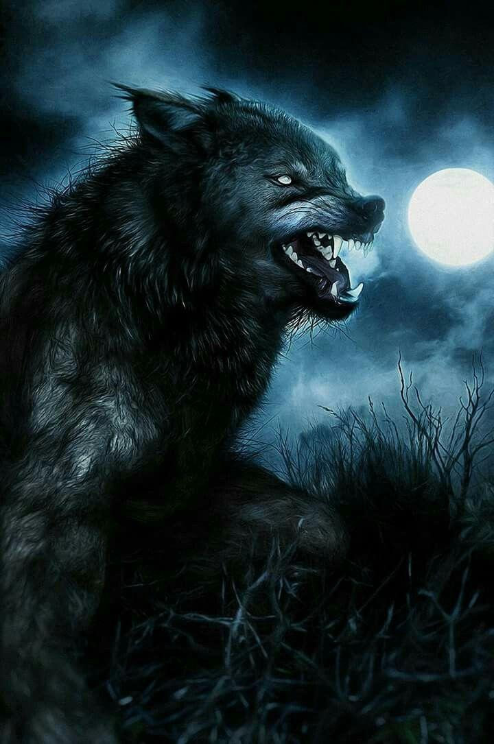 pin by jenn zieska on werewolves lycanthropy and shifters