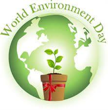 photos of environment - Google Search