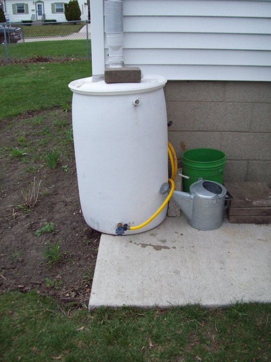 homemade rain barrel from the Wisconsin Vegetable Gardeners- meet them here then follow the link to a ton of info: Gardens Ideas, Gardens Outside, Rain Barrels, Wisconsin Vegetables, Gardens Him, Vegetables Gardens, Backyard Gardens, Gardens Outdoor, Homemade Rain
