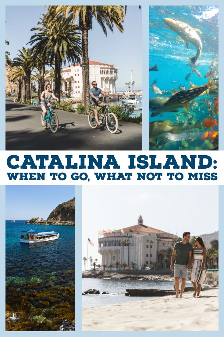 Travel To Catalina Island Located Off The Southern Coast Of