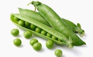 Erbsenprotein – Mit starken Aminosäuren