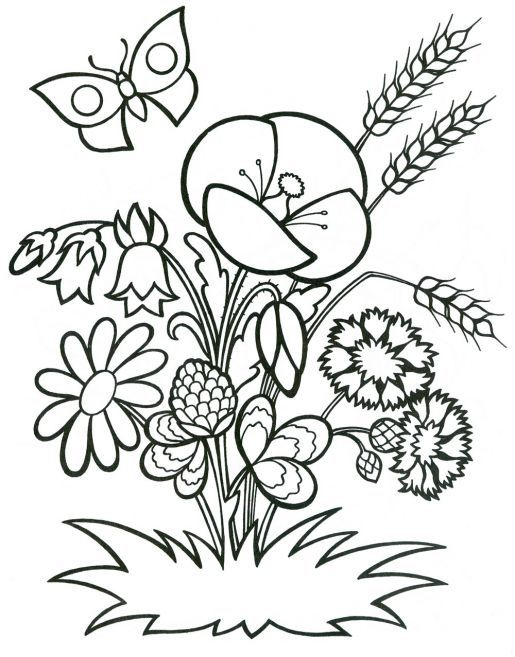 73 Best Coloring Book Pages Images On Pinterest
