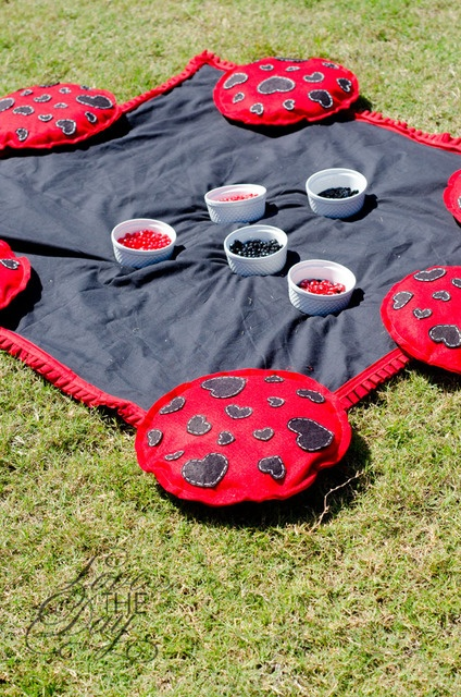 Lady Bug Party theme continued.....