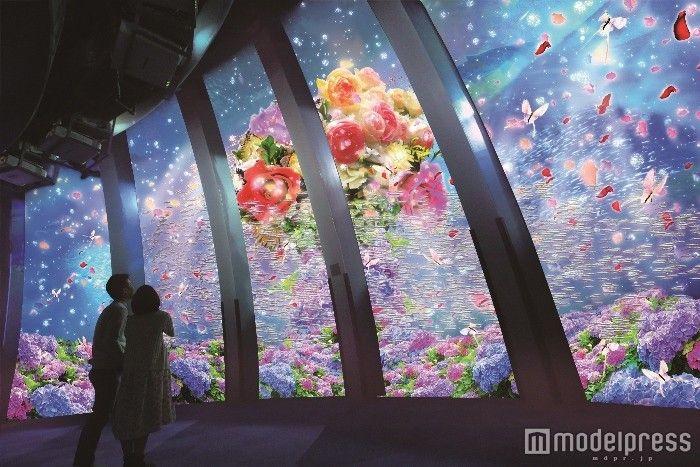 """""""楽園のアクアリウム""""に初夏の花々が舞う 八景島シーパラダイスが夏仕様に - 女子旅プレス"""