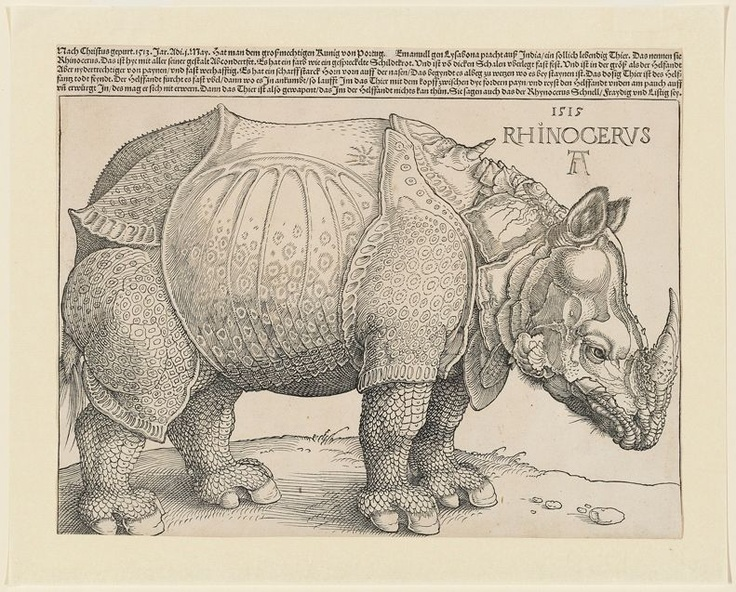 Albrecht Dürer, The Rhinoceros (B. 136; M., Holl. 241; S.M.S. 241). Woodcut with letterpress text, 1515, watermark Anchor in Circle (M. 171), a very good impression of this rare and important woodcut, first edition (of eight), with the complete letterpress text above, with thread margins or trimmed to the borderline at left and right, trimmed just inside the borderline below and to the text above, a small abrasion in the monogram, otherwise in good condition. S. 9¼ x 11¾ in. (235 x 298 mm.).