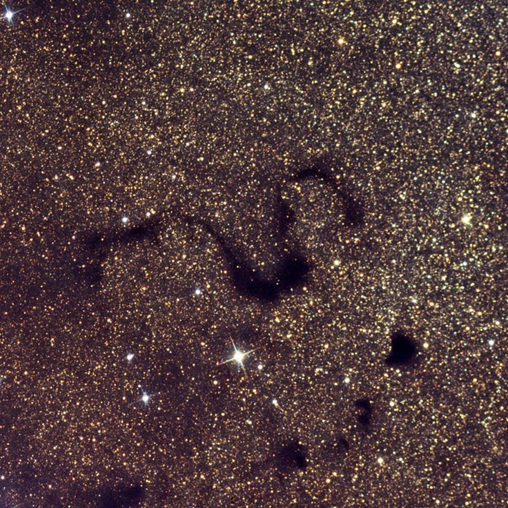 "The Snake Nebula (Barnard 72) is a dark nebula in the Ophiuchus constellation.in front of the Milky Way. A good view in a 4"" to 6"" telescope requires clear dark skies. It is part of the much larger Dark Horse Nebula."