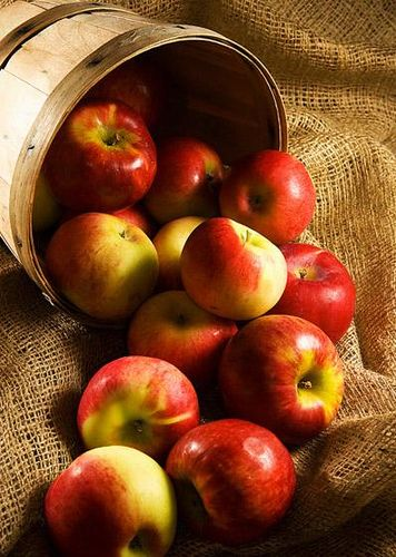 Red apples in basket ~by _poseidon_ on Flickr.