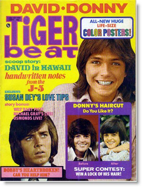Tiger Beat...Bobby Sherman, and David Cassidy!