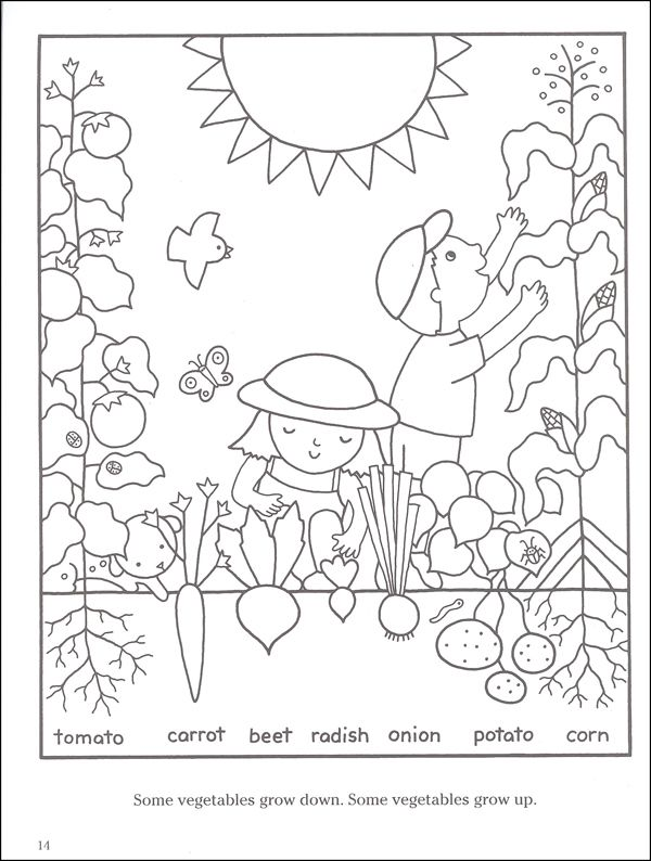 coloring pages of vegetable gardens - photo#3