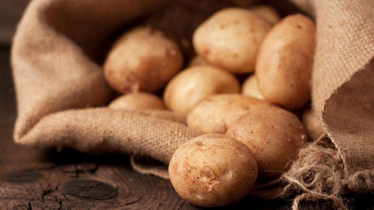 Schon vor 8.000 Jahren nutzten südamerikanische Andenbewohner die Pflanze als Nahrung. Heute verarbeitet die Lebensmittelindustrie die Kartoffel aufwändig zu verschiedensten Produkten. Die Knolle ist nicht nur lecker, sondern auch äußerst gesund.
