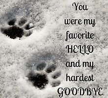 You were my favorite hello and my hardest goodbye by Kamira Gayle #pet loss #bereavement #hello #goodbye #heaven #paws #memorial