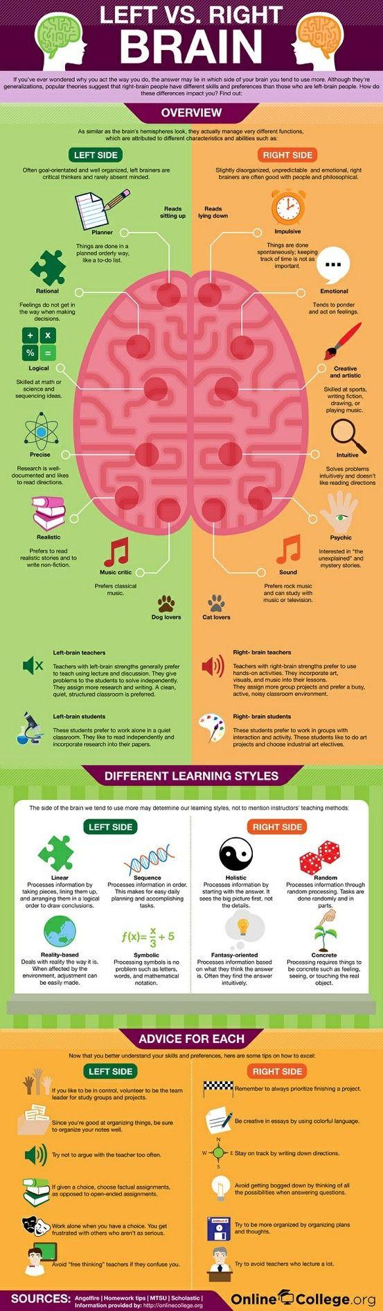 Left brain vs Right brain   MyScienceAcademy