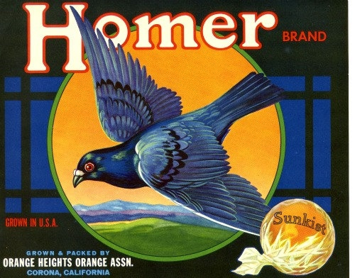 ORIGINAL HOMER ORANGE CRATE LABEL RIVERSIDE COUNTY CORONA HOMING PIGEON 1940