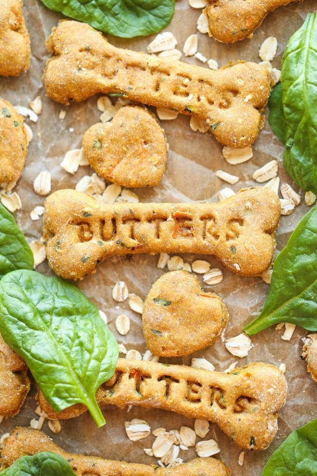 Spinach, Carrot and Zucchini Dog Treats | 17 Healthy Homemade Pet Food Recipes and Treats