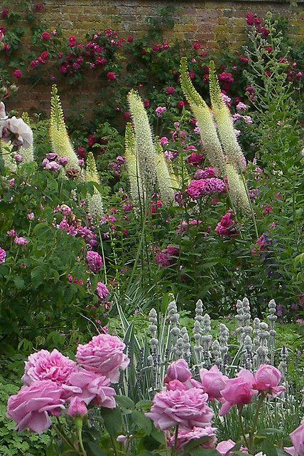 Schöne Gartengestaltung mit Kontrasten
