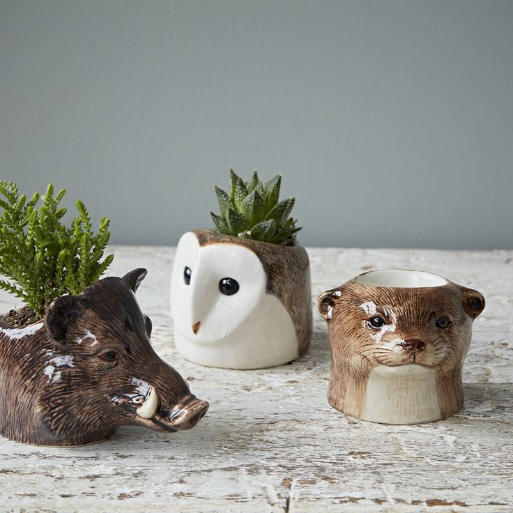 Quail  Animal Egg Cups Otter: These hand painted animal egg cups would make a great gift for the animal lover in your life, they're full of personality. Don't like eggs? These are also great planted up with little succulents or as pinch pots for your salt and pepper.