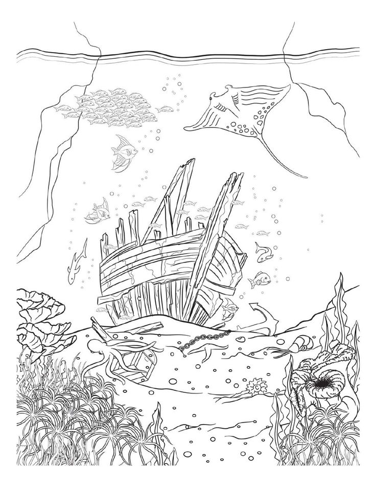 Oceana Coloring Pages For AdultsAdult ColoringColoring BooksColouringThe OceanUnderwaterPyrography