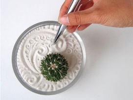 Jardin zen miniatura