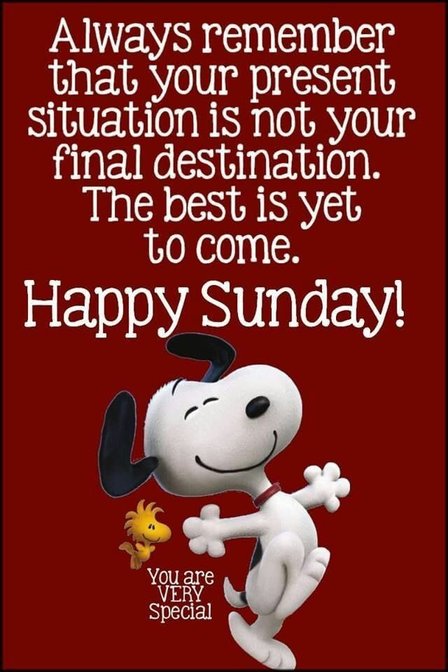 Pin By Lacretia Guest On Peanuts Sunday Quotes Funny Happy Sunday