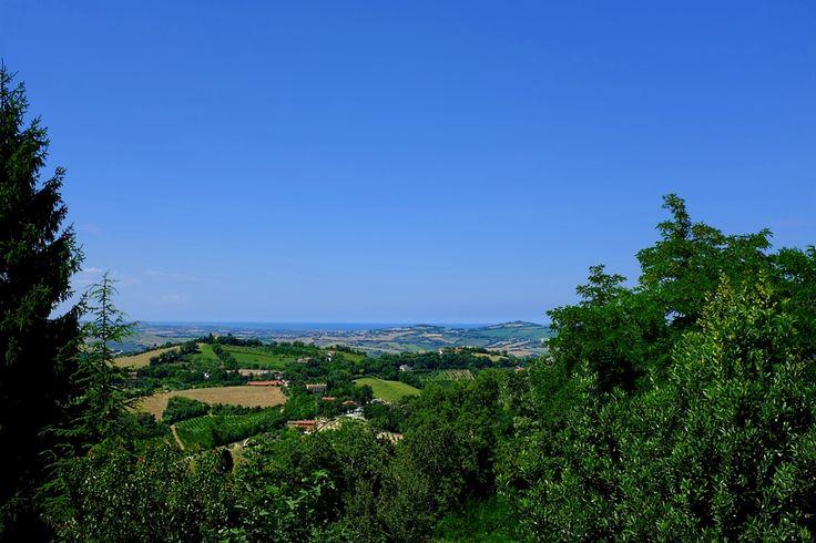 Hills and sea, Monteciccardo PU Italy (© Luigi Gallo)
