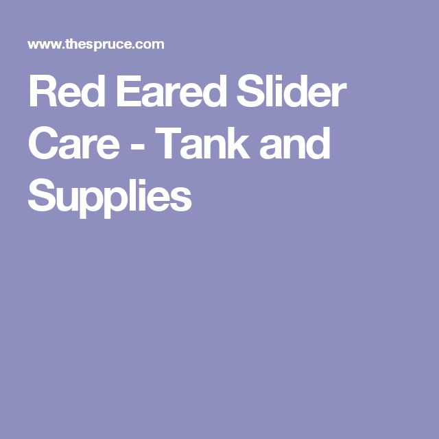 Red Eared Slider Care - Tank and Supplies