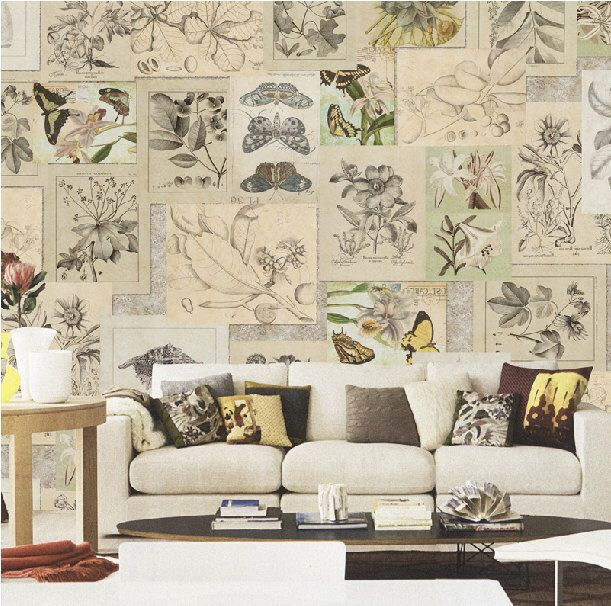 Botanical Wallpaper Vintage Shabby Chic Butterfly Plant
