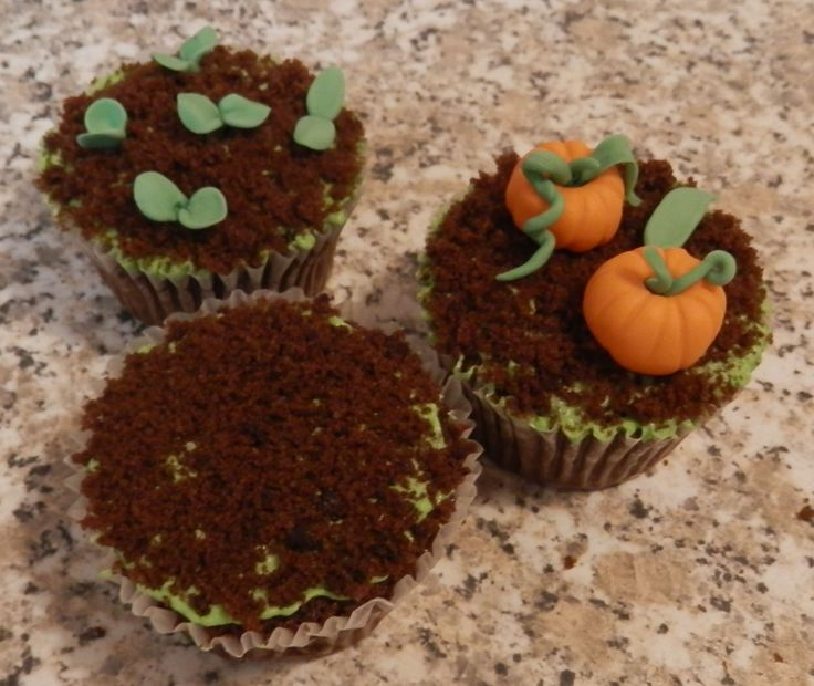 Pumpkin Patch...... sugar craft your favourite veg, #Gardening Why not treat yourselves Great Fun to do with the kids decorating your muffins