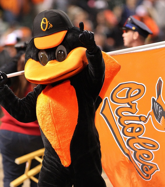 Baltimore Orioles bird by Keith Allison, via Flickr