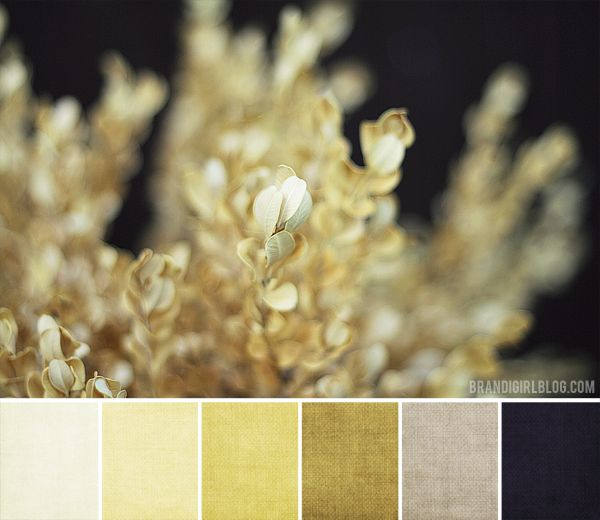 More golds than gray with a pop of black bathroom - Gold and silver color scheme ...