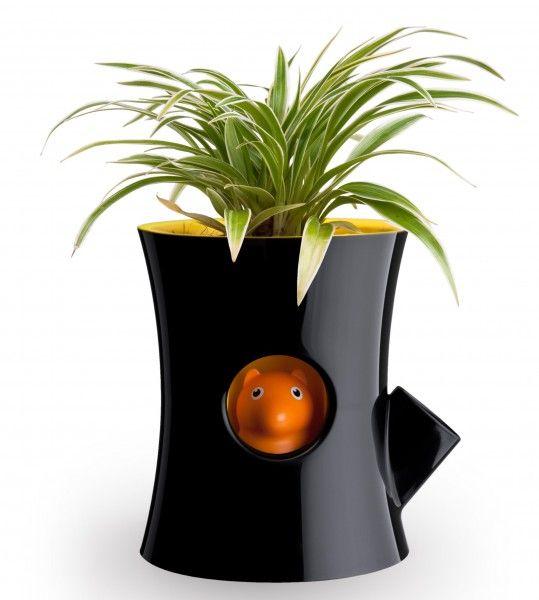 Vas autoirigant pentru plante. Recomandă-l prin Happy Share și primești 4% comision din vânzările generate.