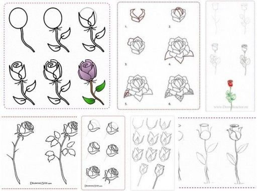 25 trending how to draw roses ideas on pinterest roses drawing how to draw rose flowers step by step diy tutorial instructions how to instructions ccuart Choice Image