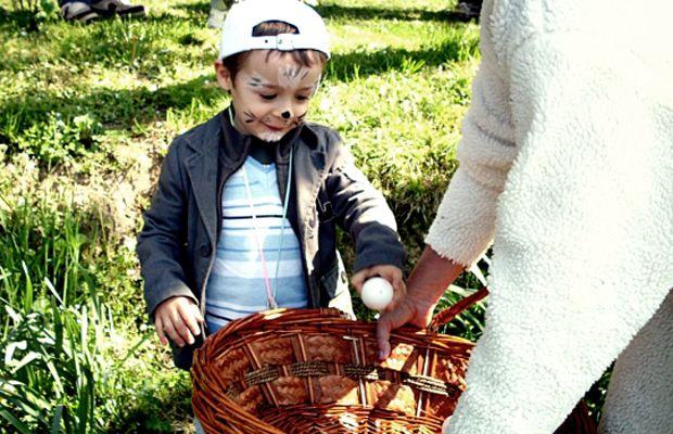 Caccia alle uova http://www.piccolini.it/post/584/caccia-alle-uova/