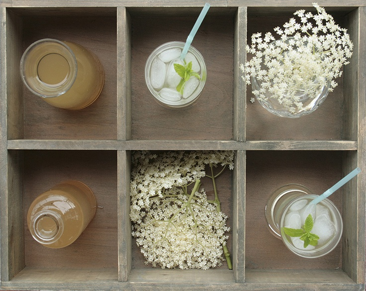 Homemade elderflower drink