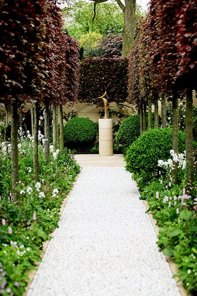Pleached copper beech in the The Laurent Perrier garden, designed by Arne Maynard, also won a gold medal at Chelsea Flower Show 2012.